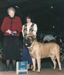 Lehigh Valley Kennel Club