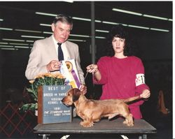 Virginia Kennel Club