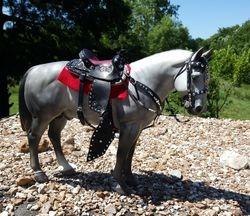 Diane's saddle set