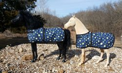 stable blankets for Laura