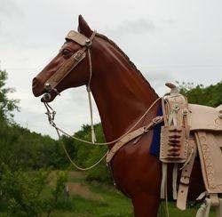 JW natural saddle set
