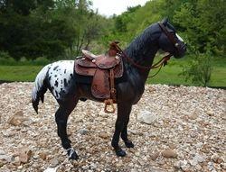 saddle set 96