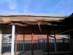 rotten structure