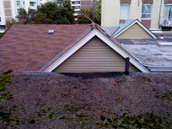 buckled, moss growing flat roof