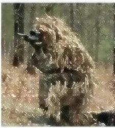Ghillie Suits Rule!!!