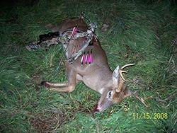 Jon's 8 Pt. Buck