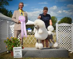 Reserve Best in Show July 30 2016