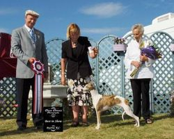 August 5, 2007 - BEST IN SHOW