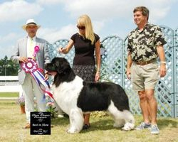 August 6, 2007 - BEST IN SHOW