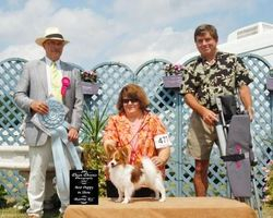 August 6, 2007 - BEST PUPPY IN SHOW