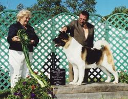 August 03, 2008 - Best Bred-By Exhibitor in Show