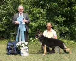 Monday, August 01 - Best Puppy In Show