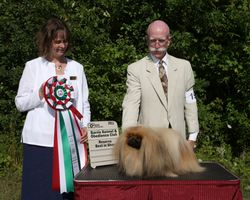 Saturday, July 30 - Reserve Best In Show