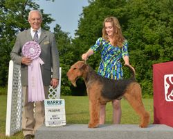 Saturday, August 2 - Reserve Best In Show