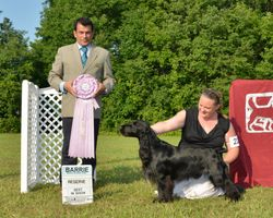 Sunday, August 3 - Reserve Best in Show