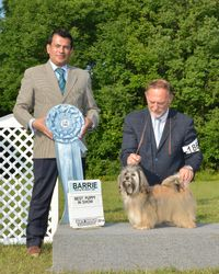 Sunday, August 3 - Best Puppy in Show