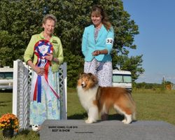 Best In Show Aug 1