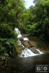 Cachoeira Ouro Fino Mata Atlantica PZ cod.0935