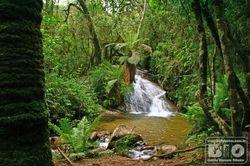 Cachoeira Parque Estadual Campos do Jordao PECJ