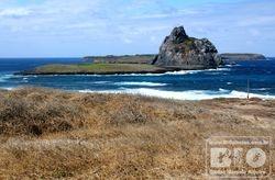 Ilha Rata Noronha cod7257