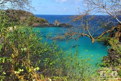 Praia do Sancho Noronha cod7189