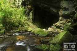 Correnteza e Caverna PEI cod.2974