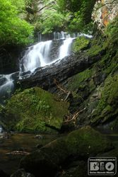 Cachoeira PEI cod.2983