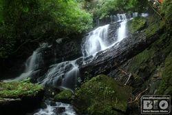 Cachoeira PEI cod.2987