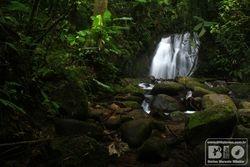 Cachoeira PEI cod.3064