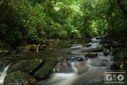 Cachoeira e correnteza PEI cod.3315
