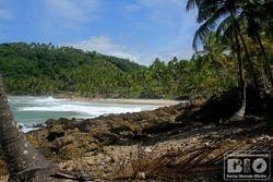 Itacare Beach - Bahia - Brazil - cod5934