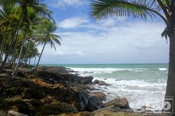 Itacare Beach - Bahia - Brazil - cod5923