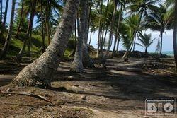 Itacare Beach - Bahia - Brazil - cod5927