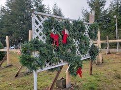 We have freshly made wreaths