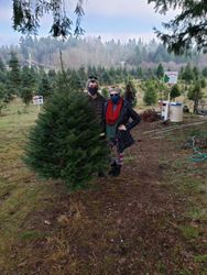 Come find your perfect tree!