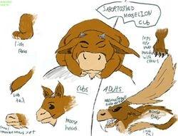 """moose-lion cub"" by insain_sokka"