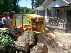 Stump Grinding2