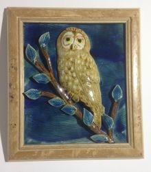 Barred Owl framed $85