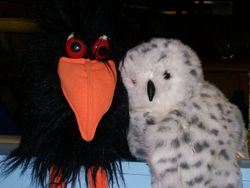 Joe The Crow & Hootie The Owl
