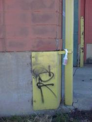 Graffiti removal from painted surfaces
