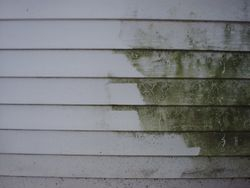 Vinyl siding on homes or business.