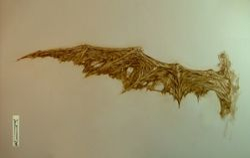 Skellig wing decrepit
