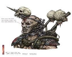 Scrotus post head wound colour head