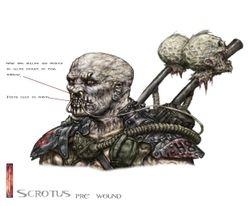 Scrotus pre head wound colour head