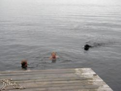 Swimming off the dock