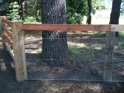 Top rail fence with netting