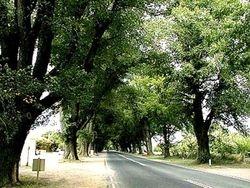 The Avenue Bacchus Marsh