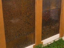 12 Frame observation hive
