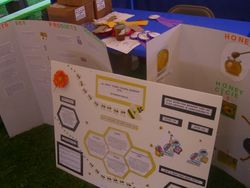 Poster Competition