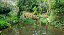 The Dell ponds